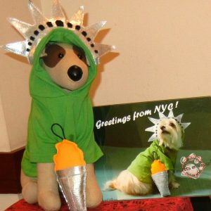 Statue of Liberty Hoody & Torch Toy