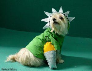 Tasha is a regal Statue of Liberty!