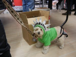 FifiGigi as Statue of Liberty